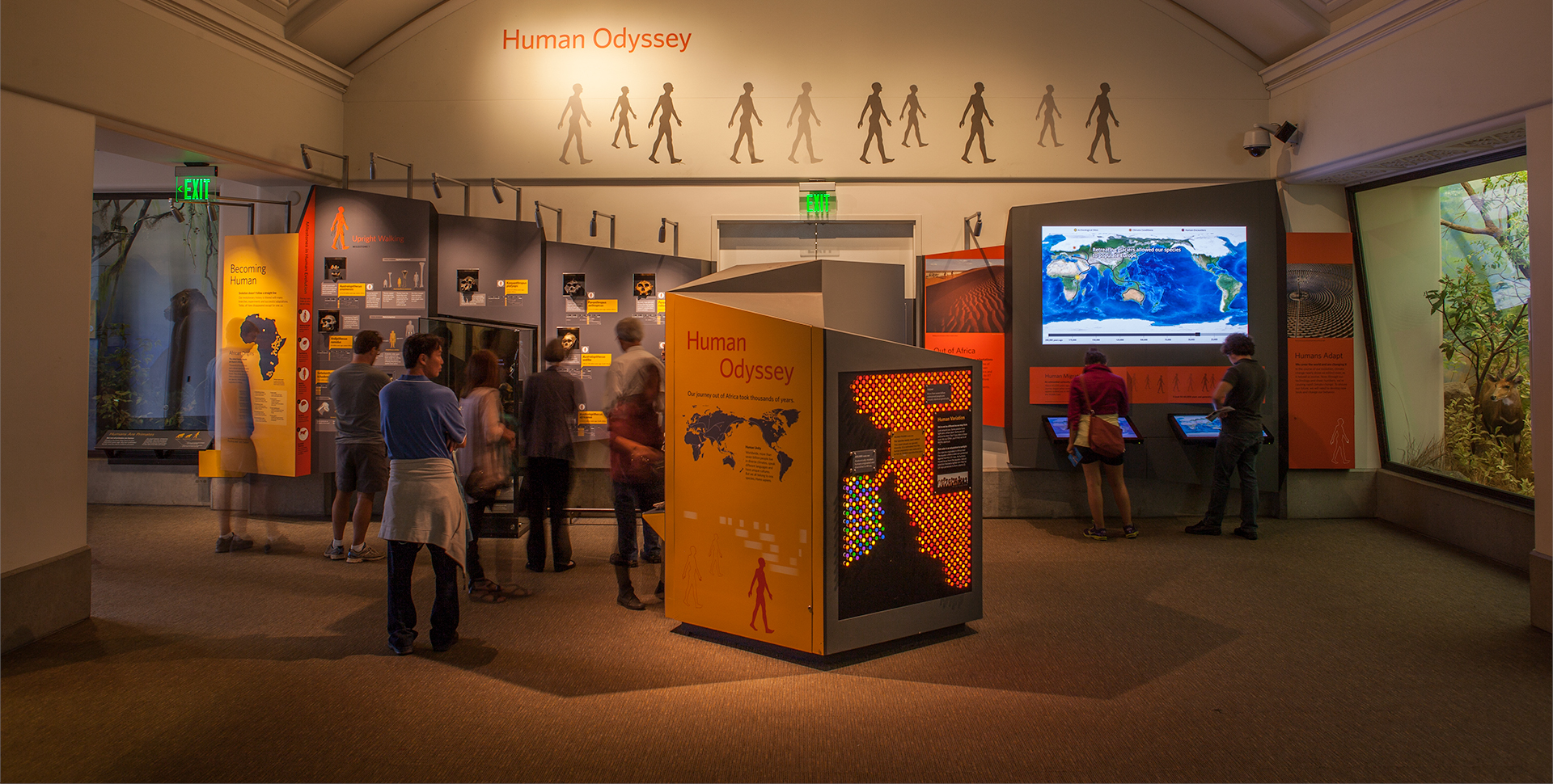 Human Odyssey | California Academy of Sciences