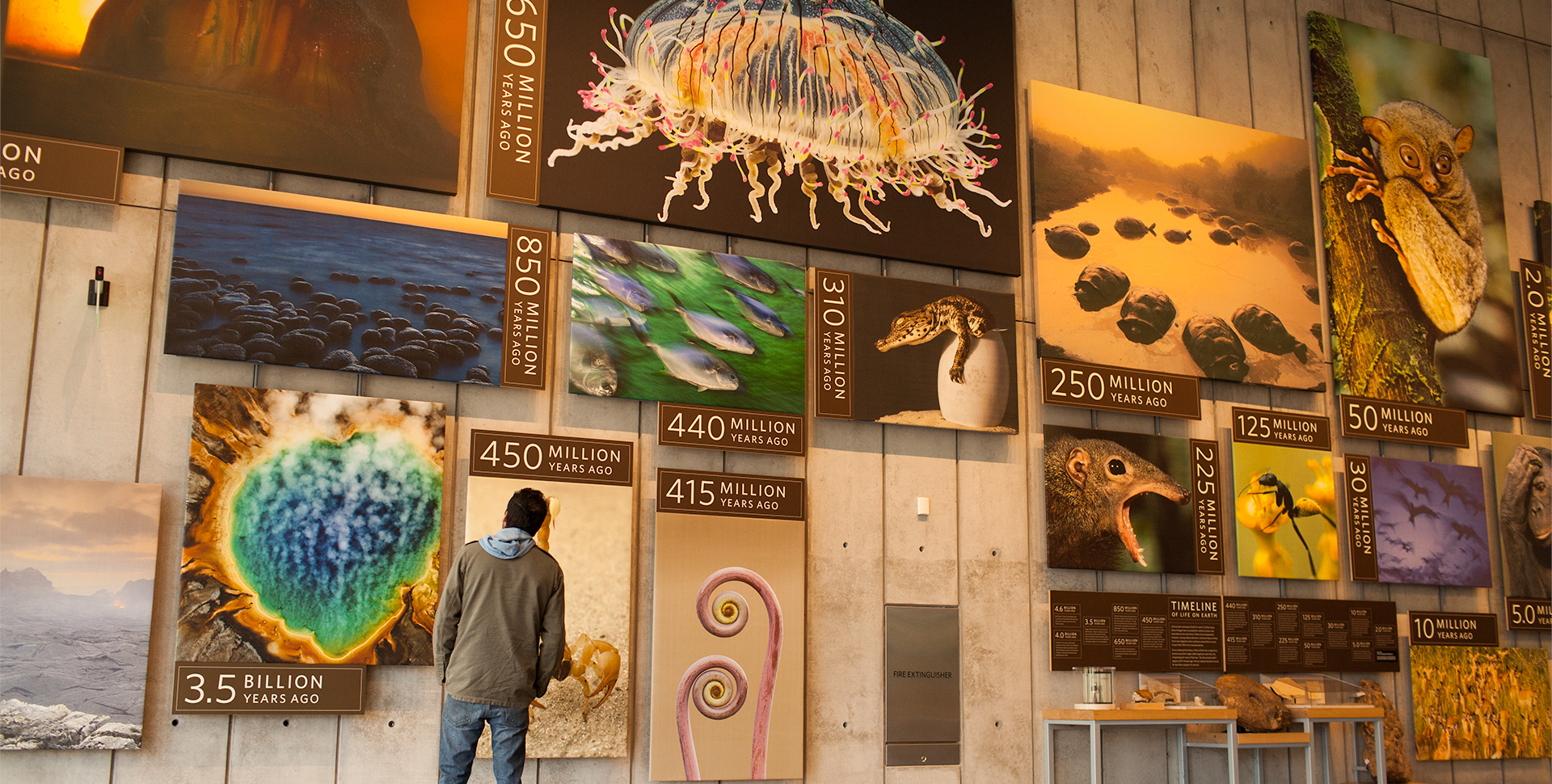Museum Of Natural History Planetarium Tickets
