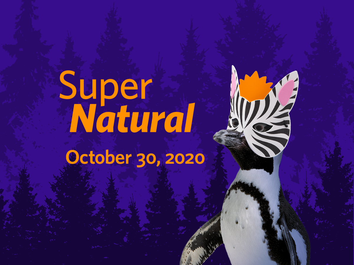 Academy Of Science Halloween 2020 SuperNatural Halloween @ Home | Halloween Fundraiser at California
