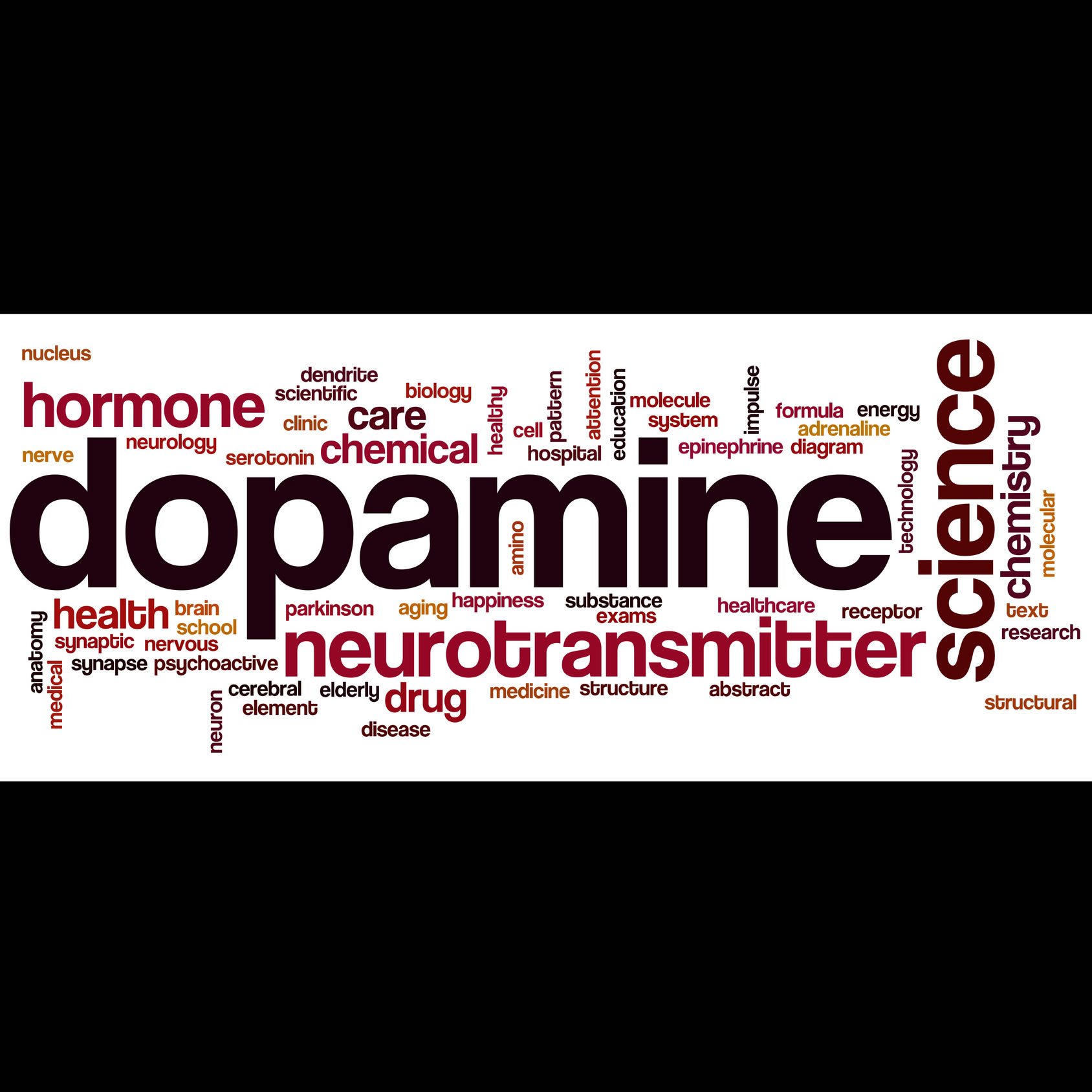 Drugs Dopamine And Lessons From The Brain California
