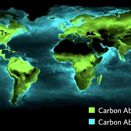 image: Timelapse: Photosynthesis Seen From Space