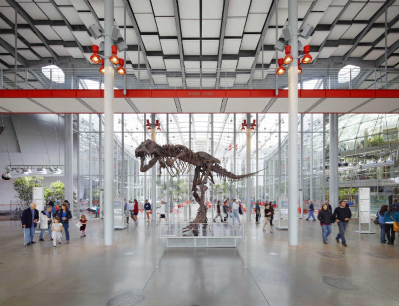 Academy Lobby T-Rex