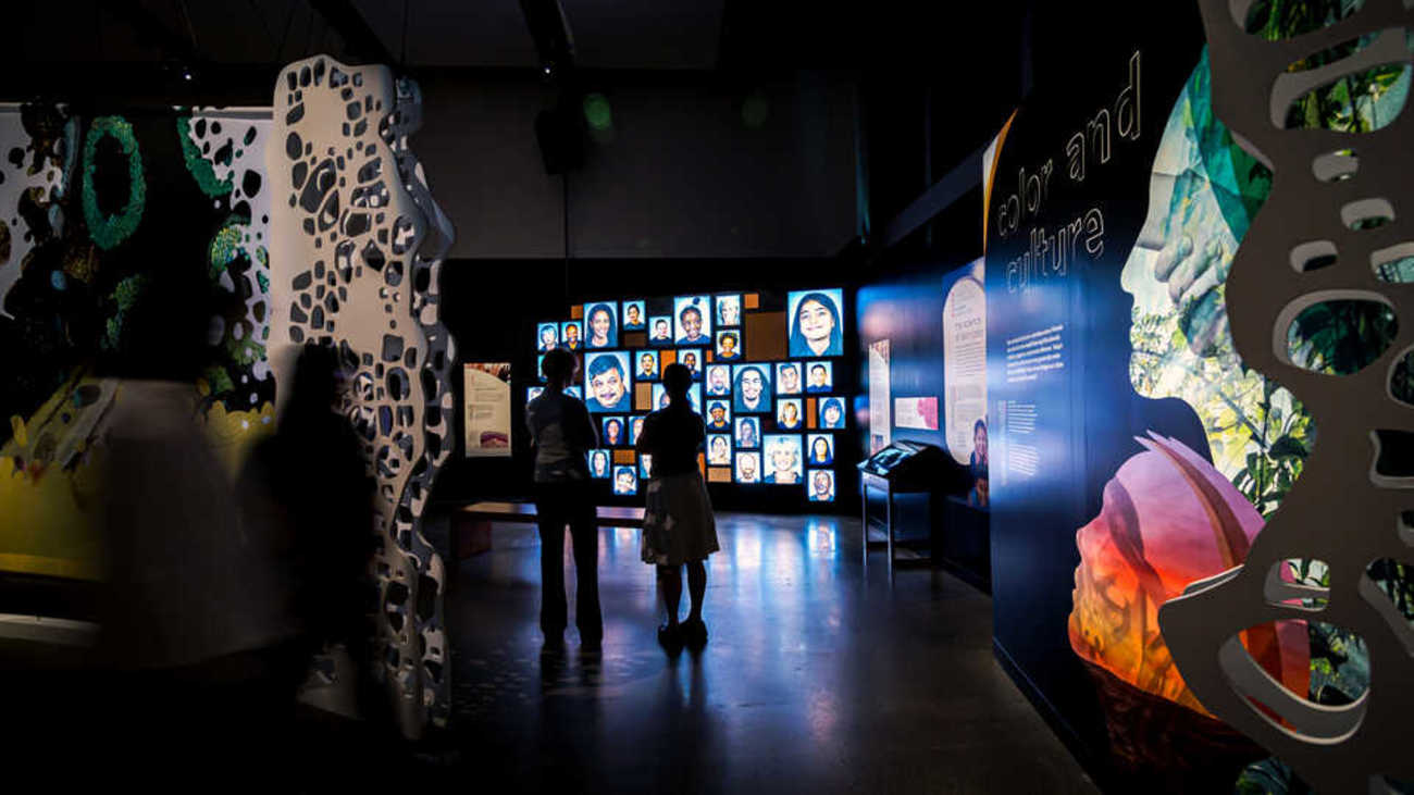 """Youth gaze upon the """"sepia rainbow"""" of human faces in the museum exhibit."""