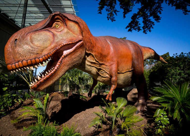 Dino Days   California Academy of Sciences