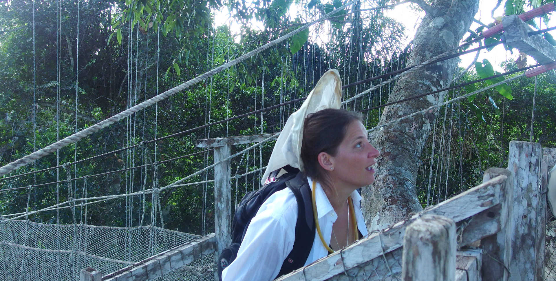 Entomology curator Michelle Troutwein hunts flies in canopy of the Peruvian Amazon.