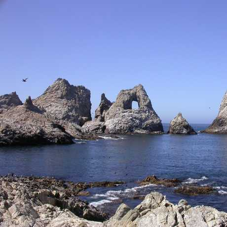 The Gulf of the Farallones National Marine Sanctuary
