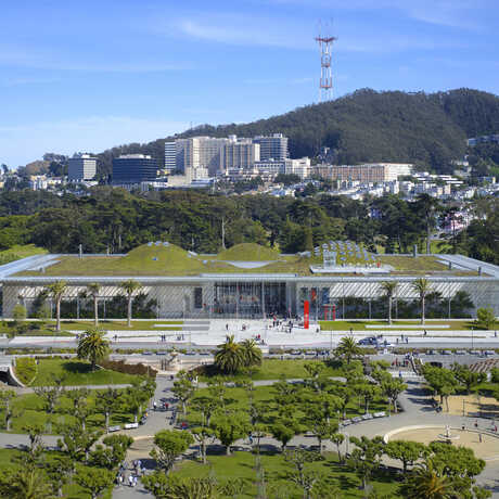 California Academy of Sciences view