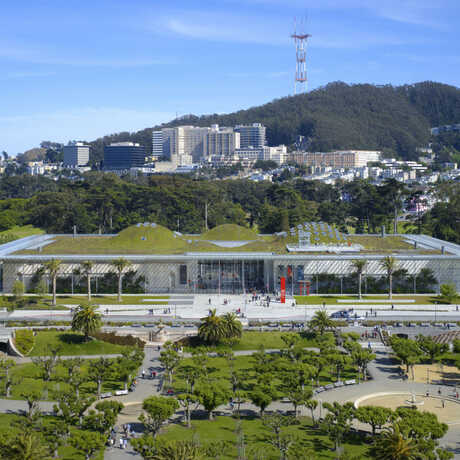 Aerial photo of the California Academy of Sciences and the Music Concourse