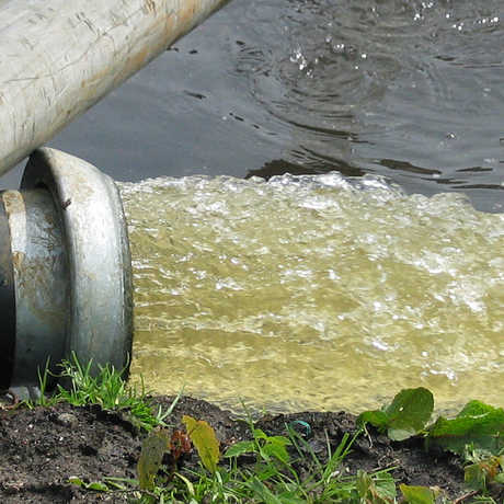 Groundwater by Gerard Hogervorst/Wikimedia Commons