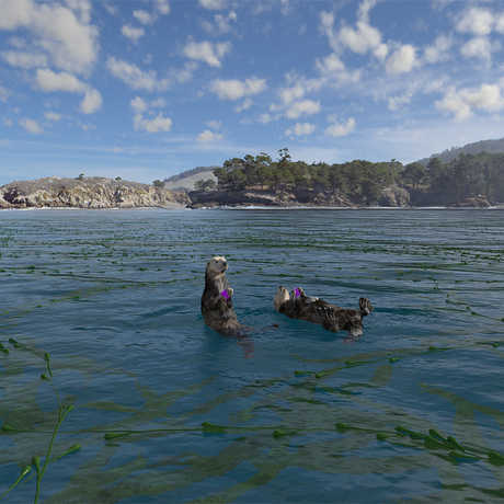 Sea otter scene from Habitat Earth