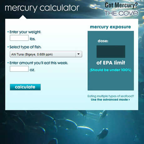 Mercury calculator by seaturles.org