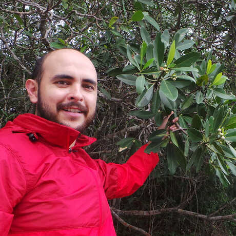 Dr. Manuel Luján