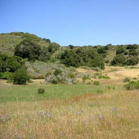 Fort Ord photo from http://fortordcleanup.com/