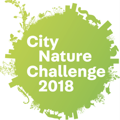 City Nature Challenge 2018 logo