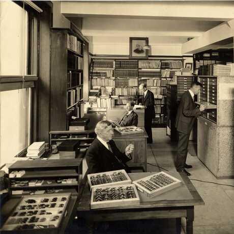 Entomology Department, 1929