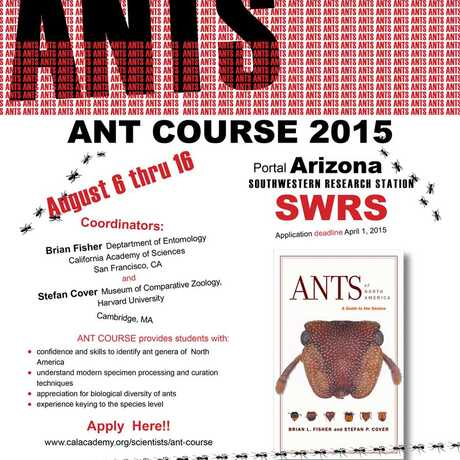 2015 Ant Course Flyer