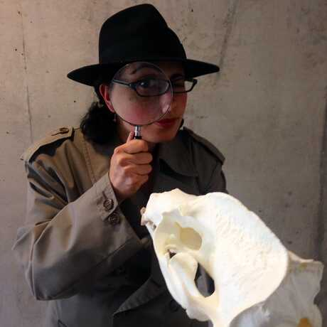 Detective character holding a skull and magnifying glass