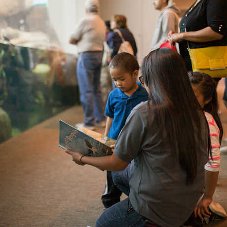 An educator reads to a young visitor by the penguin exhibit