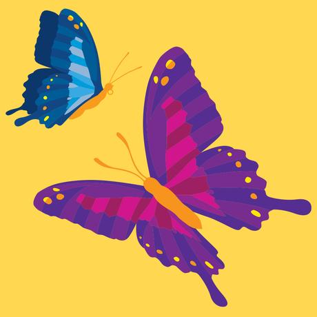 Butterfly Am I
