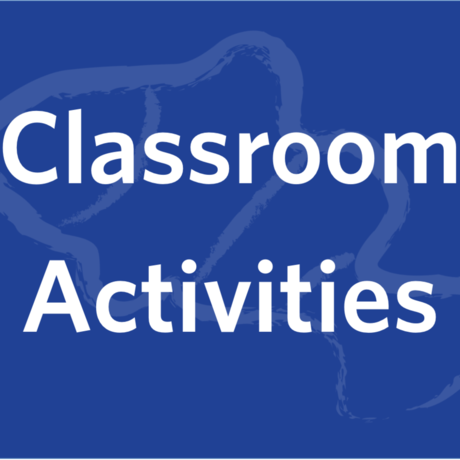 Healthy Oceans classroom activities