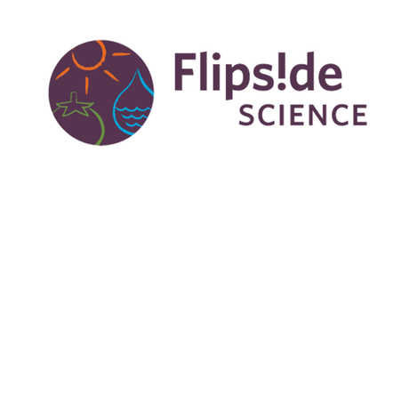 Flipside Science, environmental solutions for youth, be youth