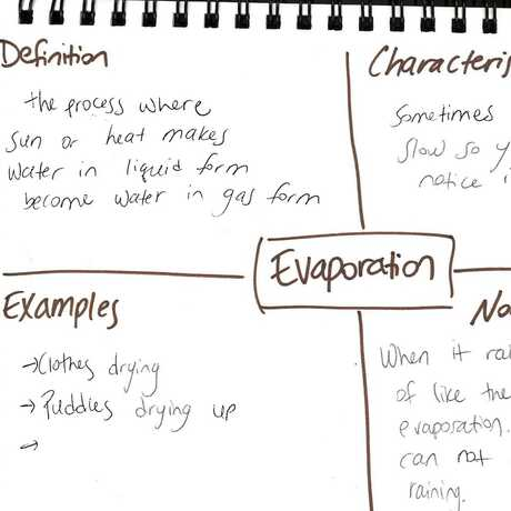 Frayer model evaporation