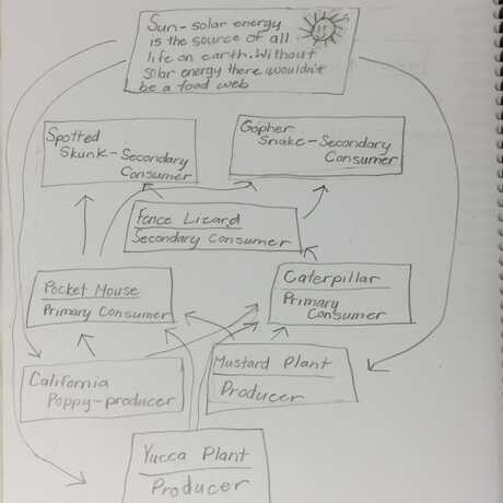 Energy transfer map