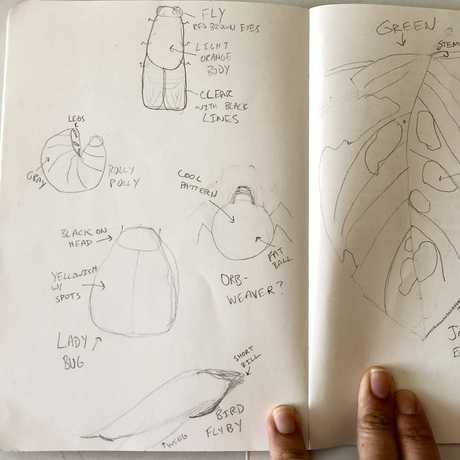 Backyard Sketches!