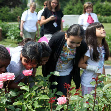 Children enjoying a garden at Roosevelt-Vanderbilt National Historic Sites