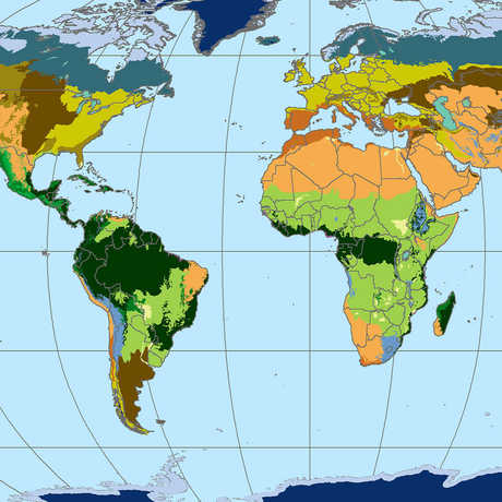 Map of world biomes