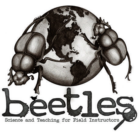 BEETLES leadership institute