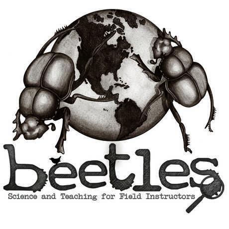 BEETLES leadership institute