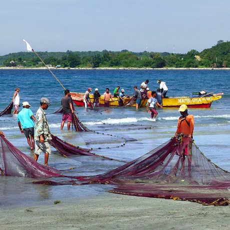 Philippine fisherman