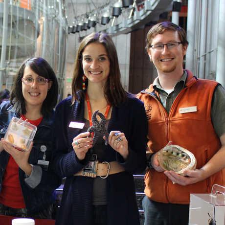 Informal educators holding museum specimens