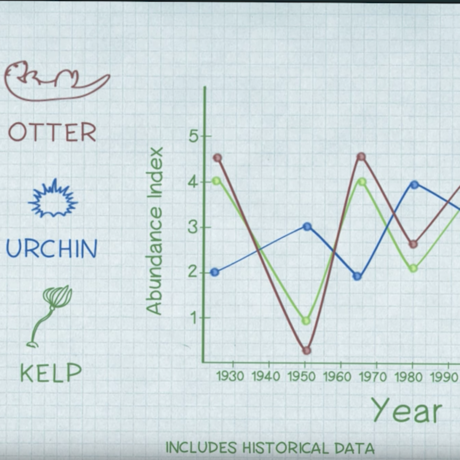 Otter, Urchan, and Kelp Chart