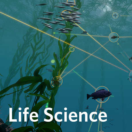 life science activities for K-12 students