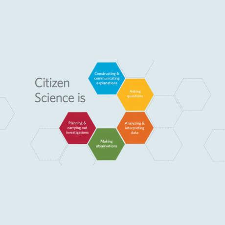 citizen science skills