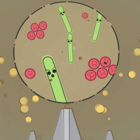 bacteria eat poo!