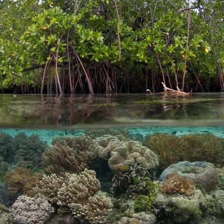 phillipines lagoon