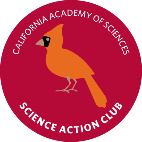 Science Action Club Bird Scouts