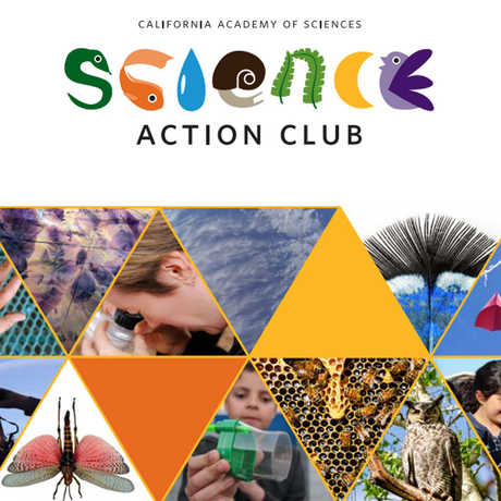 science action club flyer