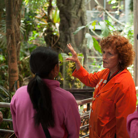 Docent shows the rainforest