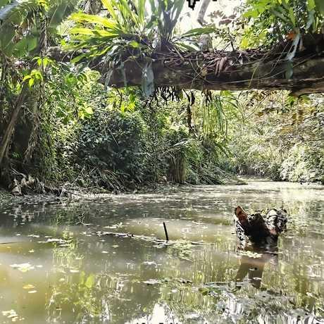 Costa Rica rainforest river
