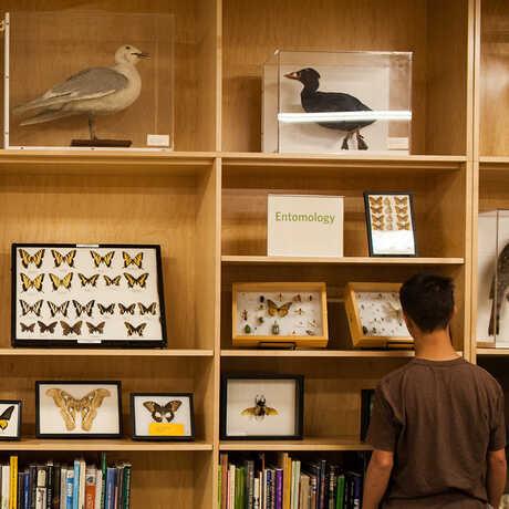 Naturalist Center