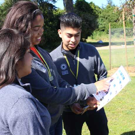 3 Academy interns looking at a Science Action Club activity sheet outdoors