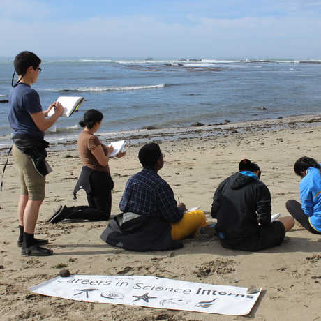 Graduate students leads CiS interns in data collection at the beach