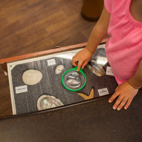 "A little girl uses a magnifying glass to hunt for ""fossils"" in an Explorers' Cove game."