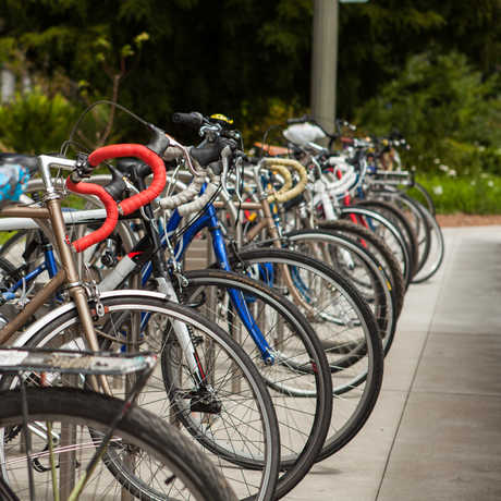 Bike racks at the California Academy of Sciences in Golden Gate Park.