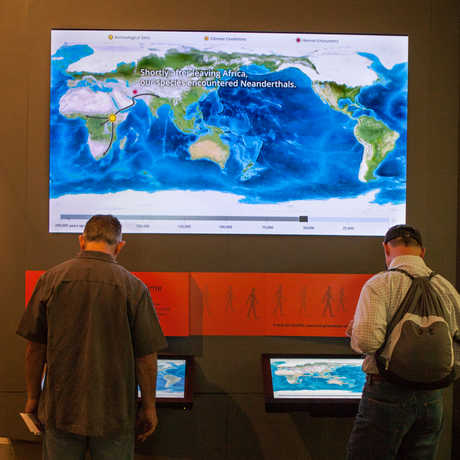 Visitors explore the Human Migration Map.