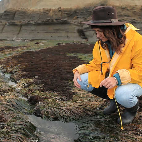 A student in the field examining a small pond.